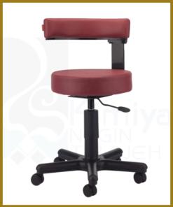 صندلی آزمایشگاهی NLCL106X